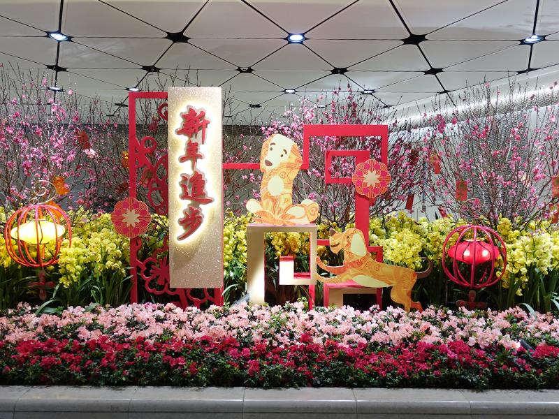 香港空港旧正月