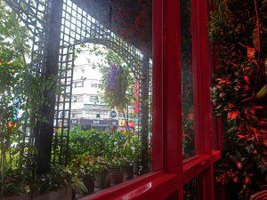 レストランの窓